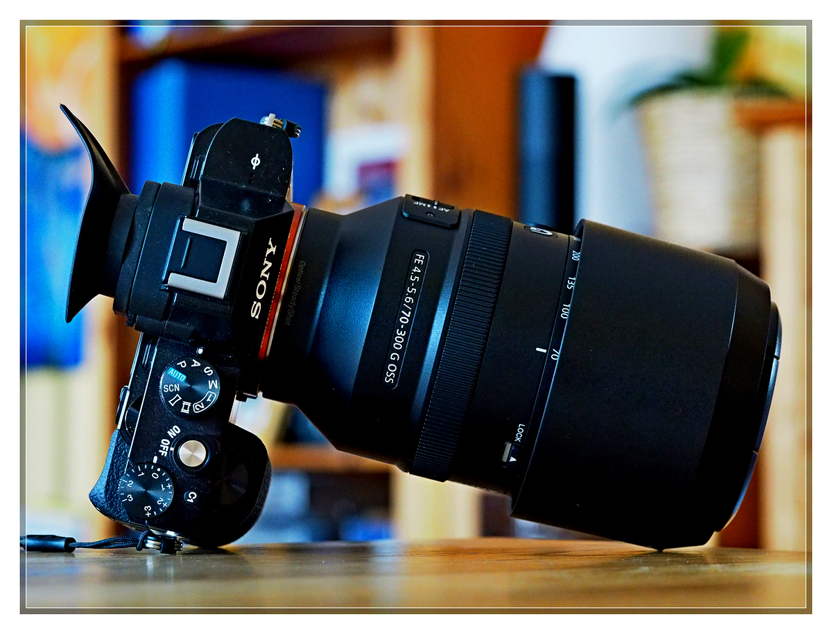 Sony FE 70-300 f4.5-5.6 G OSS