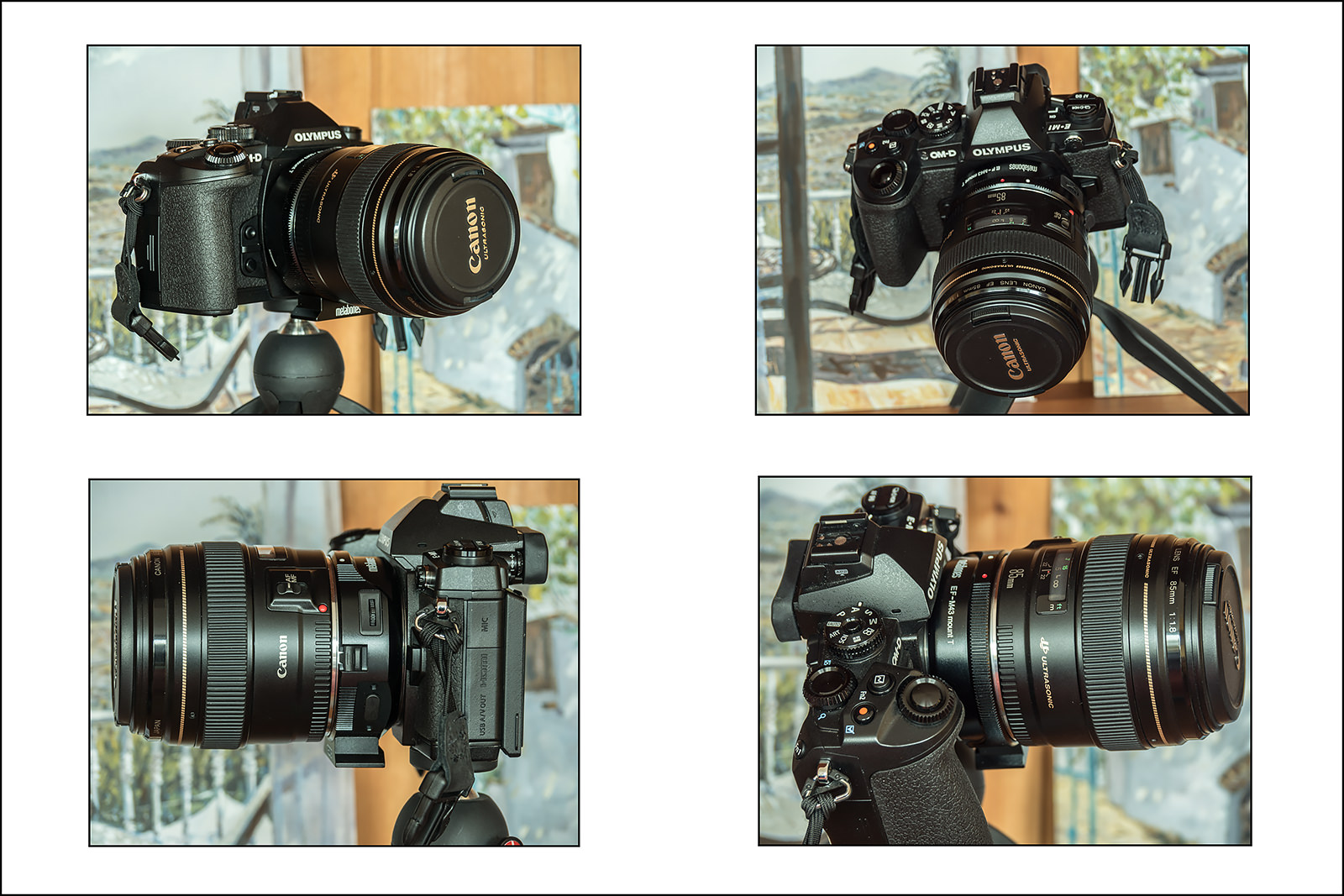 Olympus E-M1 with the Metabones adapter and Canon 85 f1.8