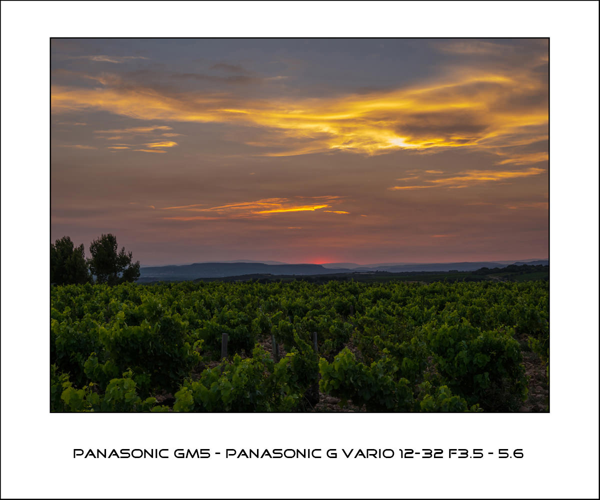 Panasonic GM5 - Panasonic Lumix G Vario 12-32 f3.5-5.6